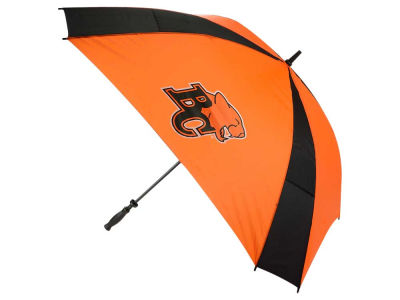 BC Lions CFL Umbrella