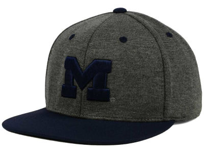 Michigan Wolverines Top of the World NCAA New Age Snapback Cap