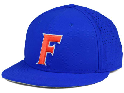Florida Gators Nike NCAA True Vapor Fitted Cap