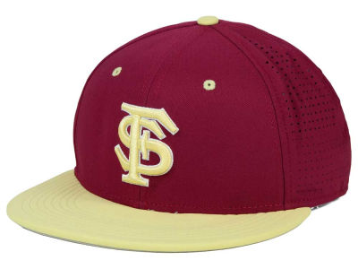 Florida State Seminoles Nike NCAA True Vapor Fitted Cap