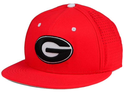 Georgia Bulldogs Nike NCAA True Vapor Fitted Cap