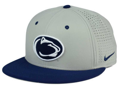 Penn State Nittany Lions Nike NCAA True Vapor Fitted Cap