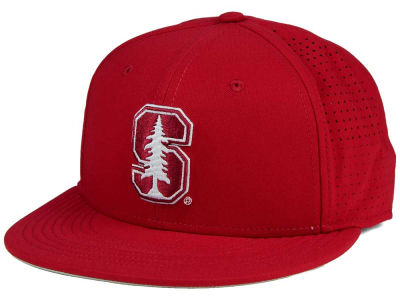 Stanford Cardinal Nike NCAA True Vapor Fitted Cap