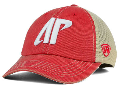 Austin Peay Governors Top of the World NCAA DP Vintage Mesh Snapback Cap