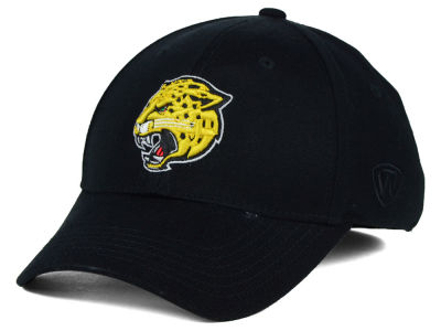 IUPUI Jaguars Top of the World NCAA DP Vintage Mesh Snapback Cap