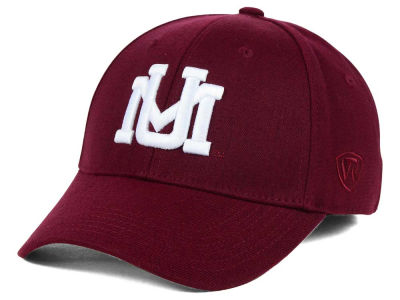 Montana Grizzlies Top of the World NCAA DP Memory Fit Cap