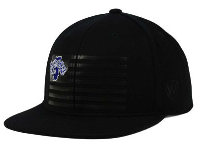 Indiana State Sycamores Top of the World NCAA Saluter Snapback Hat