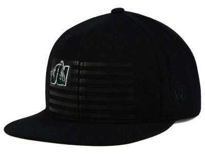 Jacksonville Dolphins Top of the World NCAA Saluter Snapback Hat