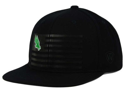 North Texas Mean Green Top of the World NCAA Saluter Snapback Hat
