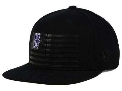 Northwestern Wildcats Top of the World NCAA Saluter Snapback Hat