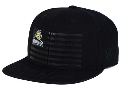 Wright State Raiders Top of the World NCAA Saluter Snapback Hat