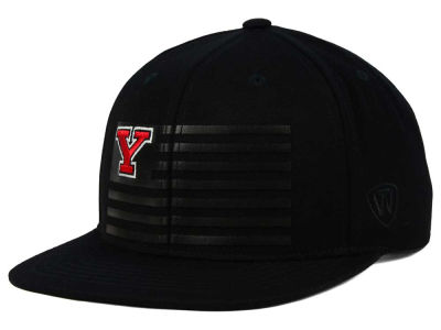 Youngstown State Penguins Top of the World NCAA Saluter Snapback Hat