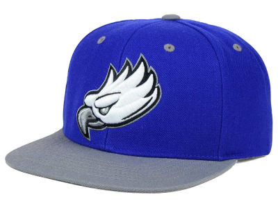 Florida Gulf Coast Eagles Top of the World NCAA Devout Snapback Cap
