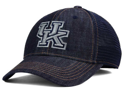Kentucky Wildcats Top of the World NCAA Sturdy Cap
