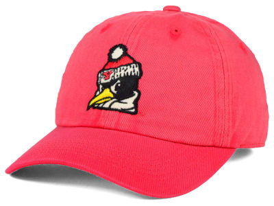 Youngstown State Penguins Top of the World NCAA Vintnew Cap