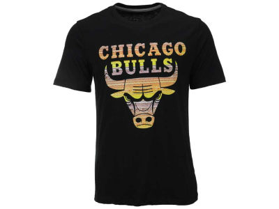 Chicago Bulls NBA Men's Tec Logo Fill T-Shirt