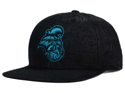 Coastal Carolina Chanticleers Top of the World NCAA Phasely Snapback Cap