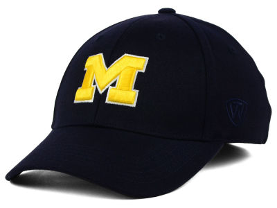 Michigan Wolverines Top of the World NCAA Memory Fit PC Cap