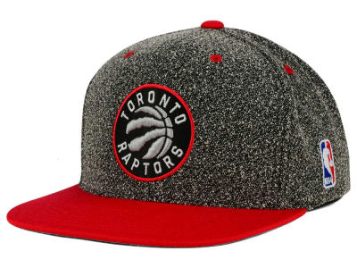 Toronto Raptors Mitchell and Ness NBA Static Team Logo Snapback Cap
