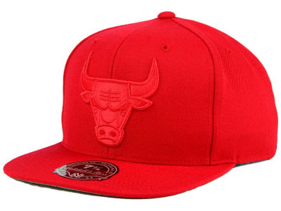 Chicago Bulls Mitchell and Ness NBA Tonal TC Hi Crown Fitted Cap