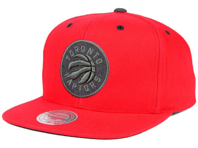 Toronto Raptors Mitchell and Ness NBA Grey Tonal Logo Snapback Cap