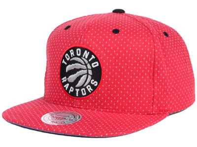Toronto Raptors Mitchell & Ness NBA Dotted Cotton Snapback Cap