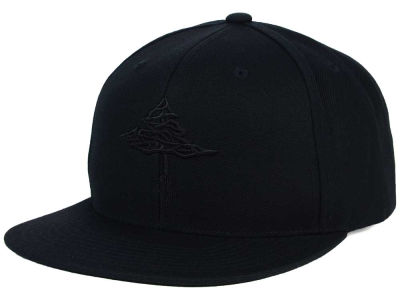 LRG Root Tree Snapback Hat