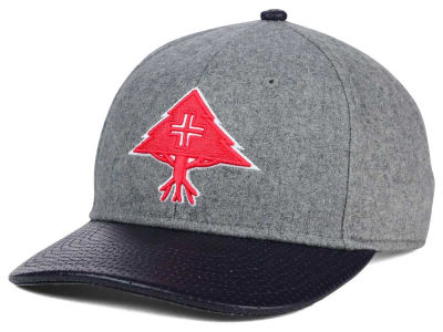LRG Big Trees Snapback Hat