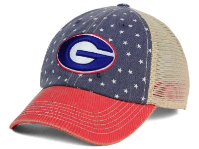 Georgia Bulldogs Top of the World NCAA Starstripe Cap