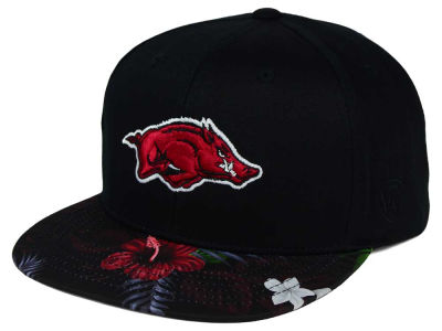 Arkansas Razorbacks Top of the World NCAA Paradise Snapback Cap