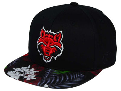 Arkansas State Red Wolves Top of the World NCAA Paradise Snapback Cap