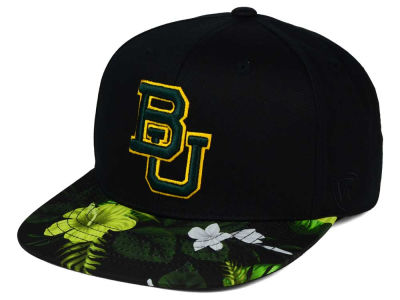 Baylor Bears Top of the World NCAA Paradise Snapback Cap