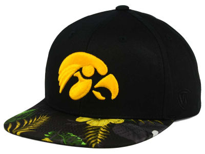 Iowa Hawkeyes Top of the World NCAA Paradise Snapback Cap