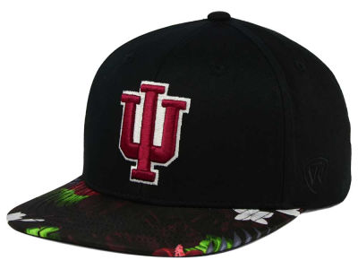 Indiana Hoosiers Top of the World NCAA Paradise Snapback Cap