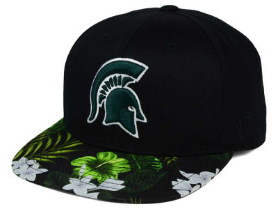 Michigan State Spartans Top of the World NCAA Paradise Snapback Cap