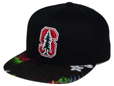 Stanford Cardinal Top of the World NCAA Paradise Snapback Cap