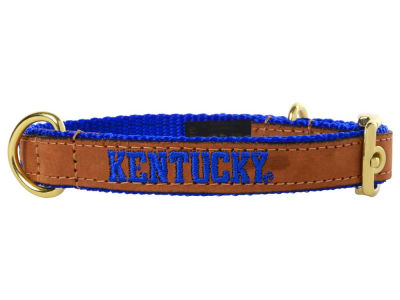 Kentucky Wildcats Leather Pet Collar-Small