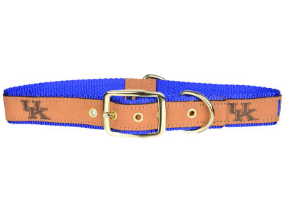 Kentucky Wildcats Leather Pet Collar-Extra Large