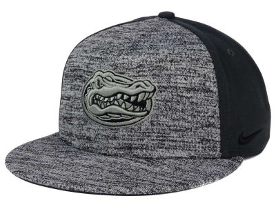 Florida Gators Nike NCAA Col Flyknit True Cap