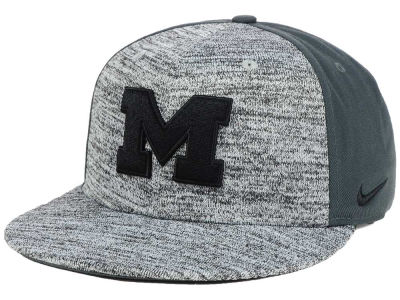 Michigan Wolverines Nike NCAA Col Flyknit True Cap