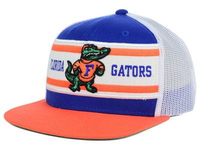 Florida Gators Top of the World NCAA Superstripe Snapback Cap