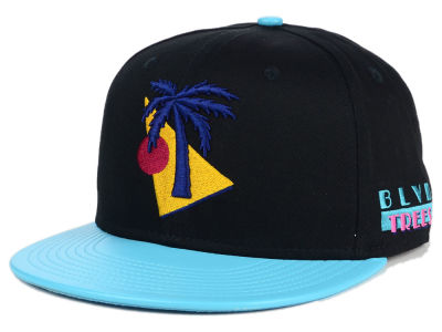BLVD Vice Snapback Hat