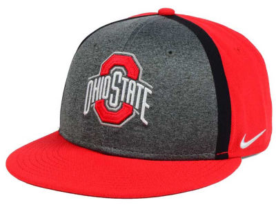 Ohio State Buckeyes Nike NCAA Sideline True Adjustable Cap