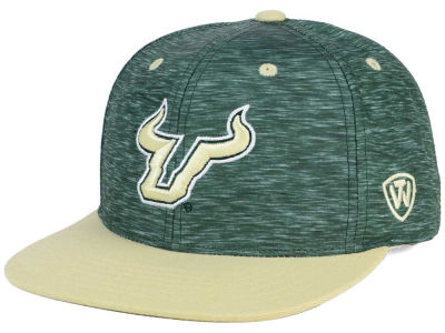 South Florida Bulls Top of the World NCAA Energy 2Tone Snapback Cap