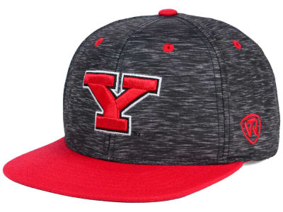 Youngstown State Penguins Top of the World NCAA Energy 2Tone Snapback Cap