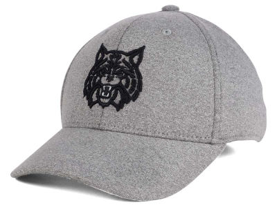Arizona Wildcats Top of the World NCAA DAFOG Stretch Cap