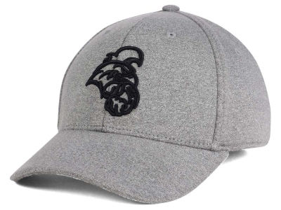 Coastal Carolina Chanticleers Top of the World NCAA DAFOG Stretch Cap