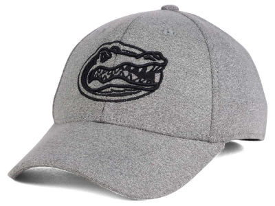Florida Gators Top of the World NCAA DAFOG Stretch Cap
