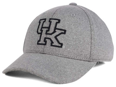 Kentucky Wildcats Top of the World NCAA DAFOG Stretch Cap