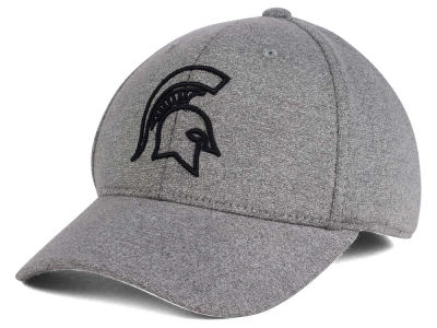 Michigan State Spartans Top of the World NCAA DAFOG Stretch Cap